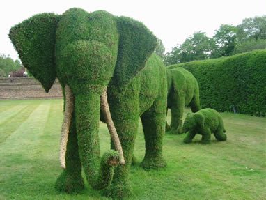olifant.jpg